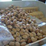 納豆を手作り!市販の納豆から増やす方法 ~ 温度さえ気を付ければ失敗しない!
